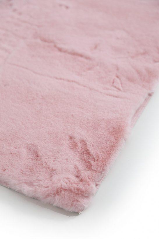 Pink-1-546x819